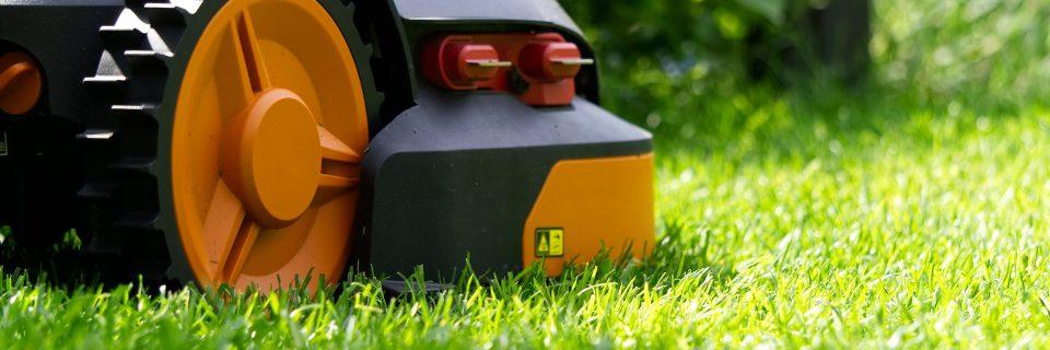 lawn care services in edmonton
