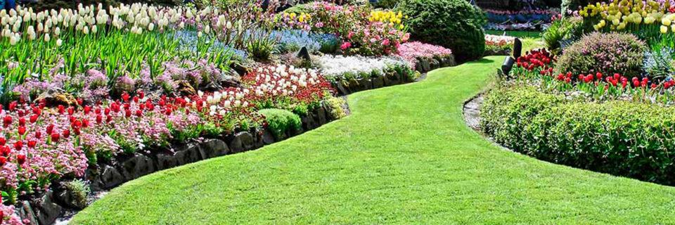 gardening services in edmonton